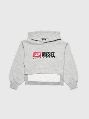SDINIEA, Hellgrau - Sweatshirts